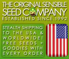Original Sensible Seeds - Latest Offers