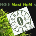 Where To Get Marijuana Seeds March Feature