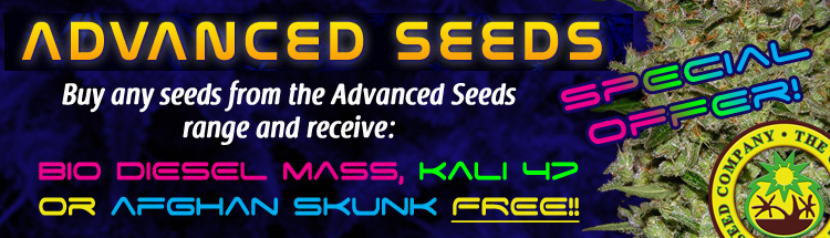 Advanced Cannabis Seeds - Click Here For Best Online Prices