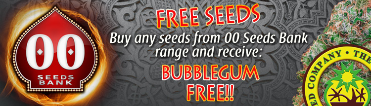 Buy Skunk Seeds Online - Free Bubblegum seeds - View More Details