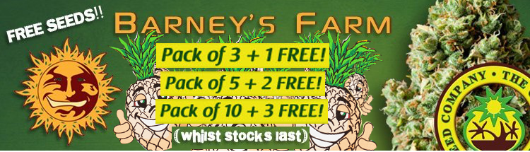 Free Cannabis Seeds From Barney's Farm