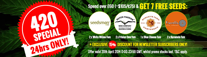 420 Time - Best Offer From Seedsman